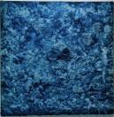 Bosco  Sodi - Organic blue